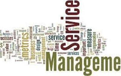 Service Manager (FT)