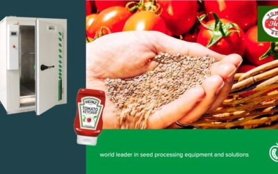 Ketch-up, its all about tomatoes at SPH and the Heinz seed division!